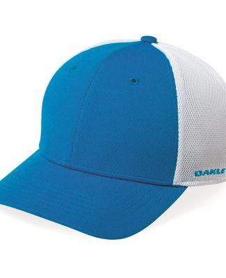 Oakley 911019ODM Driver 2.0 Cap