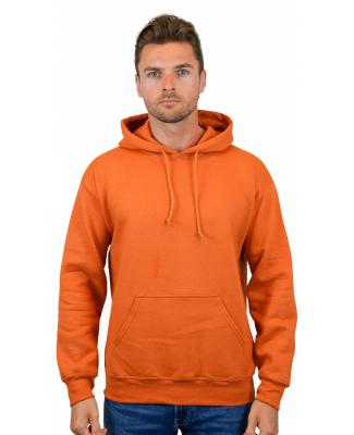 12500 Gildan 9.3 oz. Ultra Blend® 50/50 Hood Catalog