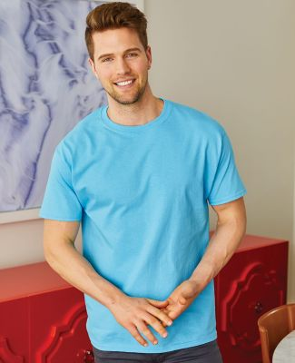 5250 Hanes Authentic Tagless T-shirt Catalog