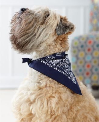 3905 Doggie Skins Bandana Catalog