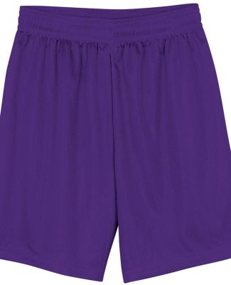 N5255 A4 9 Inch Adult Lined Micromesh Shorts PURPLE