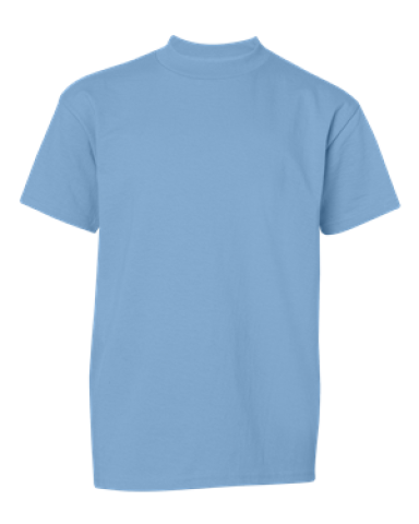Champion T435 Youth Short Sleeve Tagless T-Shirt Light Blue