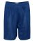 "5109 C2 Sport Adult Mesh/Tricot 9"" Shorts Royal"