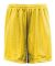 "5109 C2 Sport Adult Mesh/Tricot 9"" Shorts Gold"