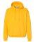 Russel Athletic 695HBM Dri Power® Hooded Pullover Sweatshirt Gold