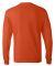 5586 Hanes® Long Sleeve Tagless 6.1 T-shirt - 558 Orange