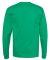 5586 Hanes® Long Sleeve Tagless 6.1 T-shirt - 558 Kelly Green