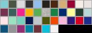 2001W swatch palette